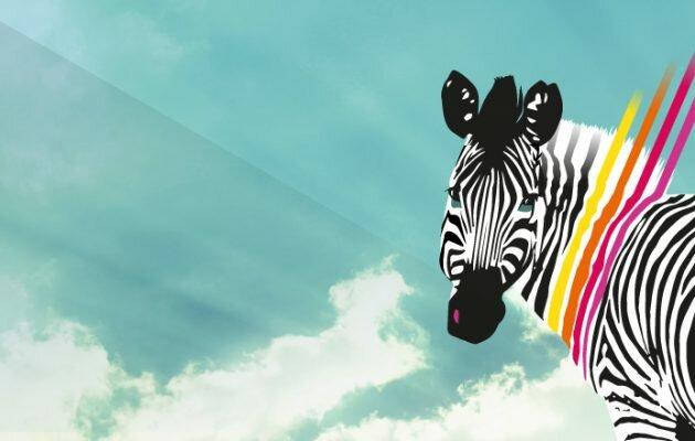 communaute pays aix zebre